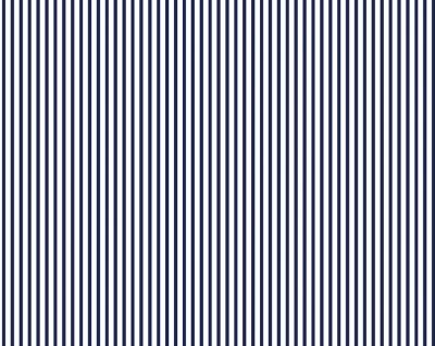 Dress Stripe (Navy)