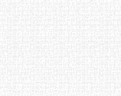 Net (White)
